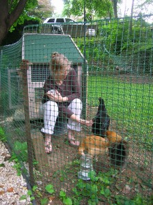 Fran and chickens, before we built the free-range enclosure.